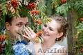 Фотосъёмка свадеб, мероприятий. - Изображение #3, Объявление #767886